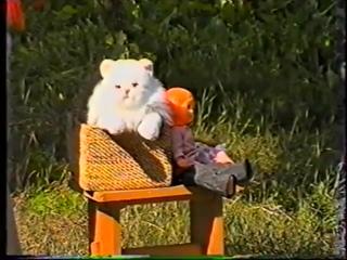 ВЦРК видео фильм Сказки Кота Котофеевича - 2000г