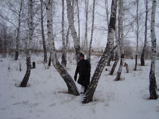 Сергей Решетников, 39 лет, Магнитогорск, Россия