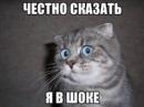 Персональный фотоальбом Василя Матвійчука