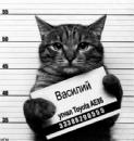 Фотоальбом Василия Ветера