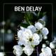 Hardsoul, Ben Delay feat. Katie Costello - Shadowplay