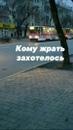 Фотоальбом Вани Переметова