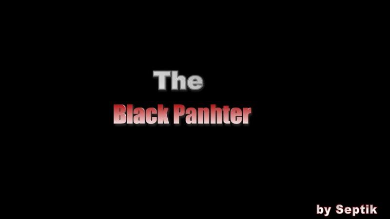 Черная пантера! Самая красивая дикая кошка.
