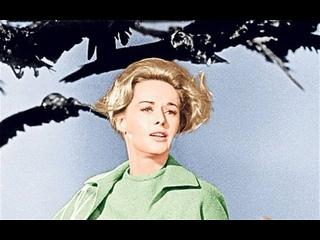The Birds 1963 / Птицы HD 1080 (rus)