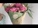 Видео от Алисы Клематис