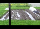 4 июня 2020 год - огород в воде