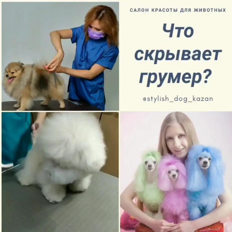 VID_105170218_161918_826.mp4