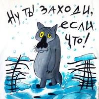 Фото Дмитрия Кучарова ВКонтакте
