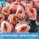 Владимир Головин фотография #26