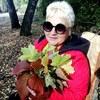 Елена Стародубцева
