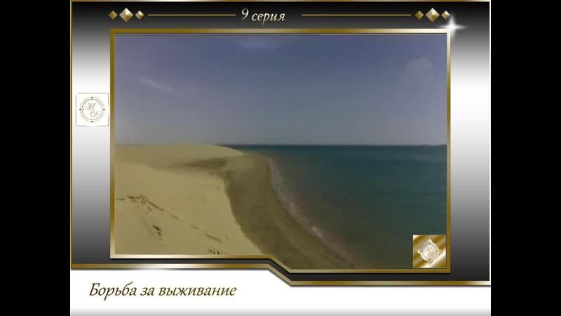 Борьба за выживание 9 серия Пустыня и море