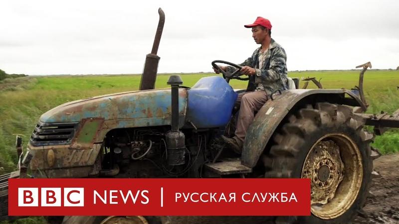 Китайцы захватывают русскую деревню Мы поехали и узнали