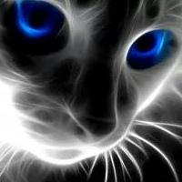 Фотография профиля Вити Аки ВКонтакте