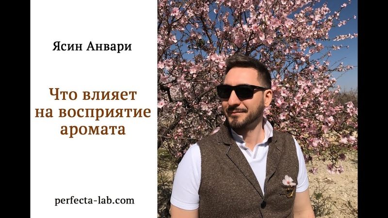 Что влияет на восприятие аромата Ароматные встречи с Ясином Анвари
