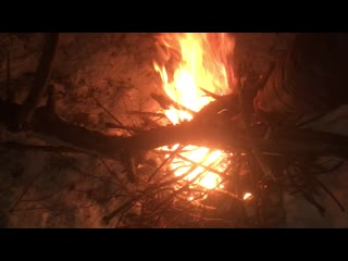 Vlog●(Вылазка в ночной лес)